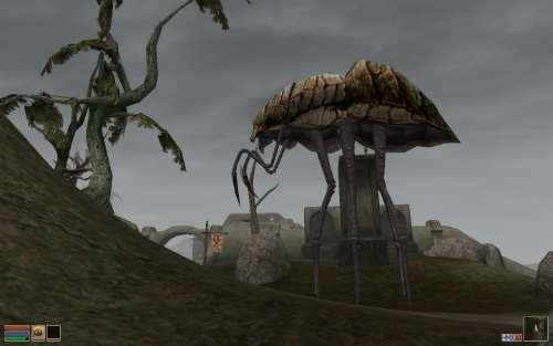 Morrowinddot