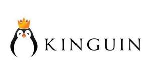 is-kinguin-safe-to-use